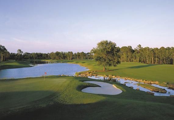 Calusa Pines Golf Course Naples, Florida