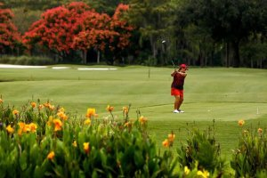 golf-memberships-quail-creek-naples