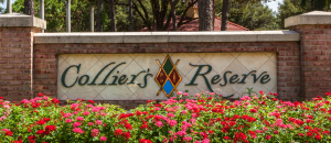 Colliers Reserve golf real estate in Naples, Florida